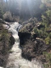 Raymond Meadow Creek