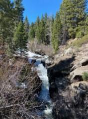 A somewhat raging (seen it higher) Raymond Meadow Creek.