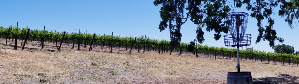 Disc Golf Among the Vines