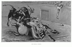 The Bull Fight