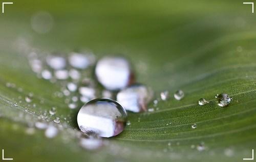 Raindrop-pixabay
