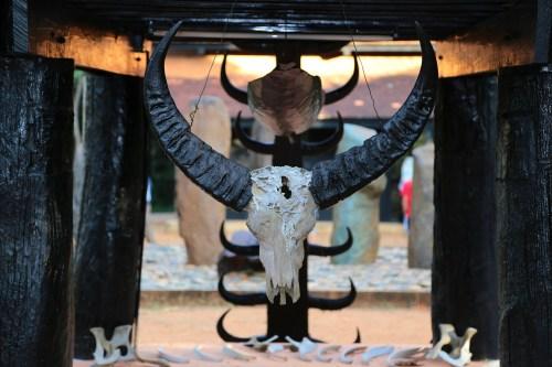 skull-650165_1920