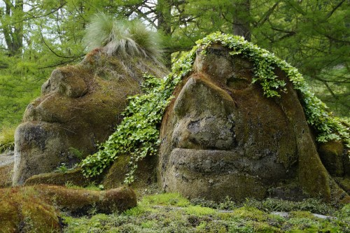 Troll - Das Nagetier