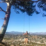 Hanging in the Swing of Things – The Secret Swing