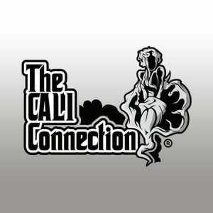 "Positronics ""The Cali Connection"""