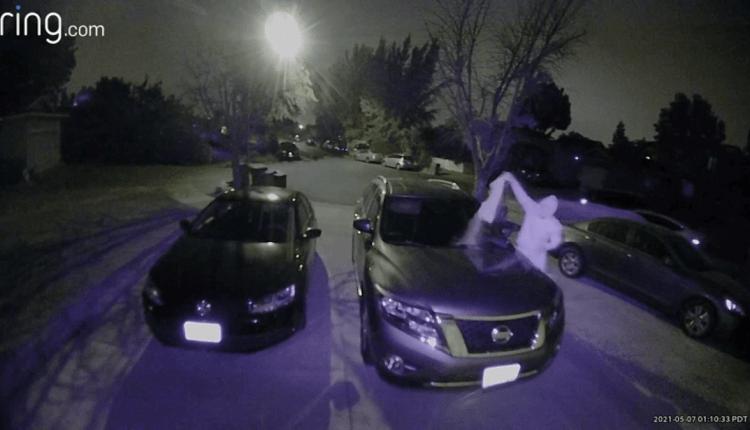 feces-on-car-sj.png