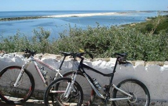 Kid Friendly Biking Adventures Through Europe