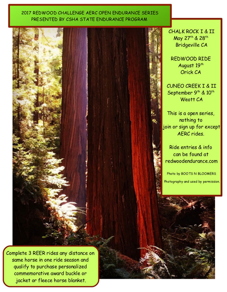 2017 Redwood Series Flyer