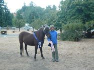 Alexis Niehaus and Popeye 1st Place Junior LD 2010 Cuneo Creek