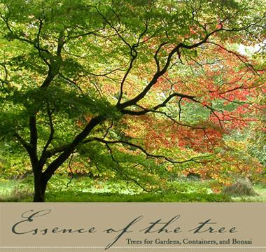 Essence Of The Tree logo