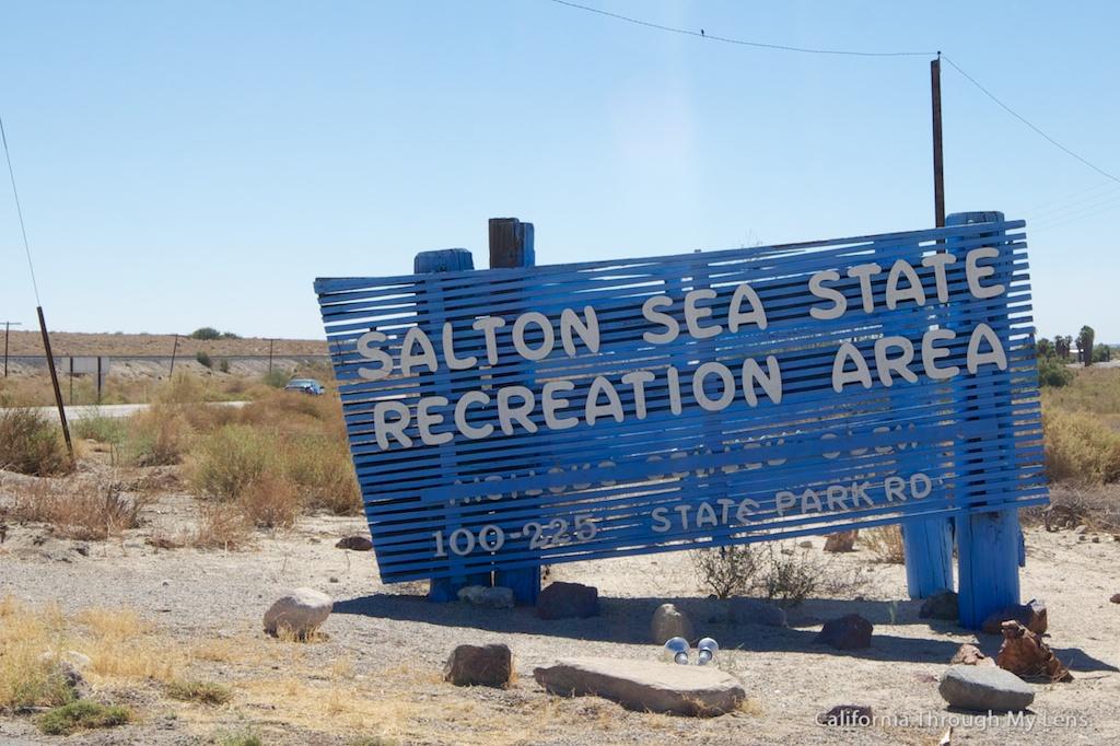 Salton Sea Attractions Art Mud Volcanoes And Dead Fish