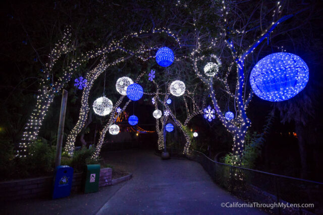 Zoo Lights Near Me