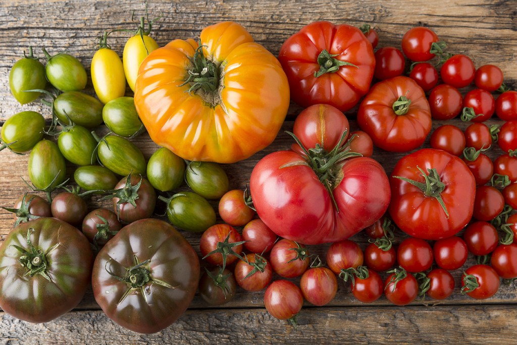 Tomatoes are among the best vegetables to grow in Southern California