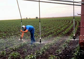 """""""Dropped nozzles"""" hover right above the canopy of crops, reducing water lost to evaporation and drift. Source: USDA, Natural Resources Conservation Service"""