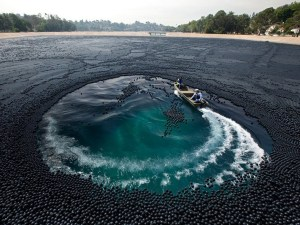 Recreational activities bump up against the black ball approach. Image source: www.amusingplant.com