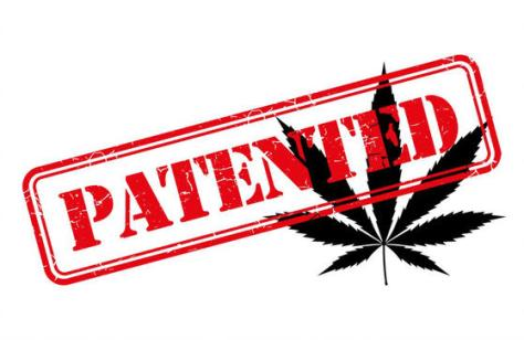 How To Patent Your California Canna Business | The California Weed Blog