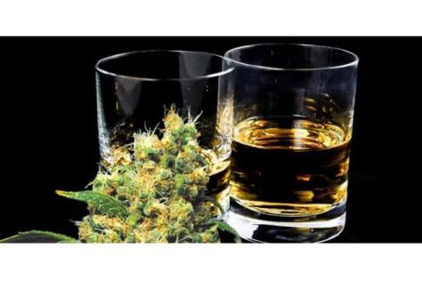 Study Shows Medical Marijuana Lowers Alcohol Sales | California Weed Blog