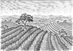 j lohr winery photo