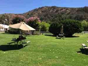 rancho sisquoc winery lawn