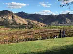 best san diego wineries