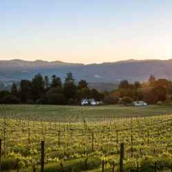 credit card for wine lovers discount winery la follette