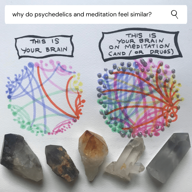 why do psychedelics and meditation feel similar