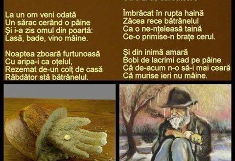 Coaja de paine