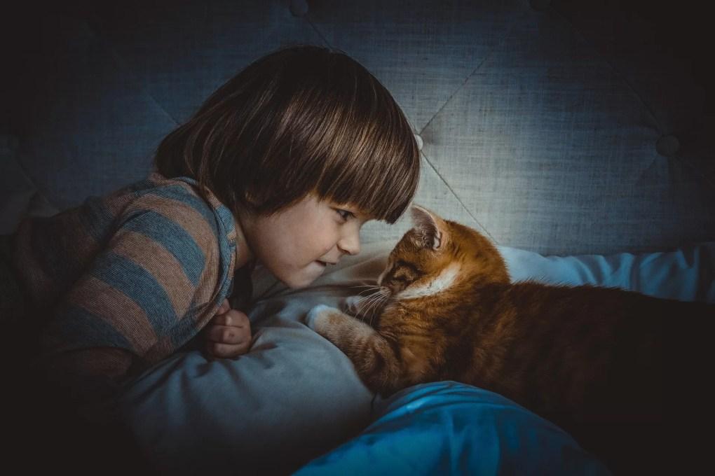 Enfant faisant mine d'être en colère contre son chat