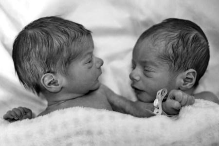 jumeaux bébés nouveau-né