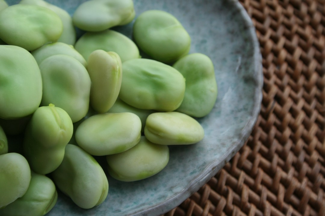 Broad-beans-after-cooking