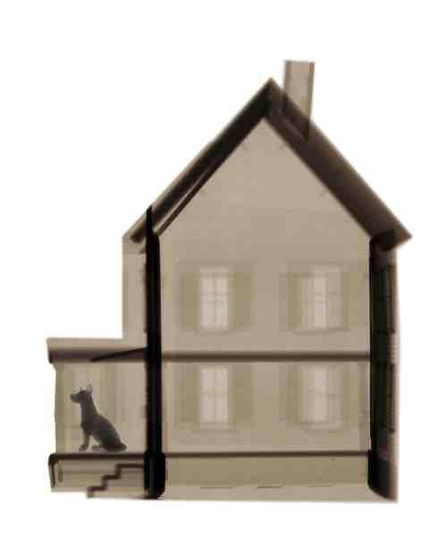 David Arky x-ray photograph: house