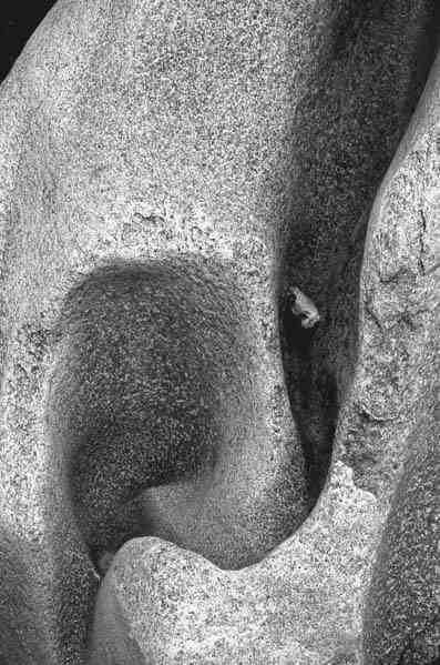 Bedrock: Writers on the Wonders of Geology by Lauret E. Savoy, Eldridge M. Moores, Judith E. Moores  3