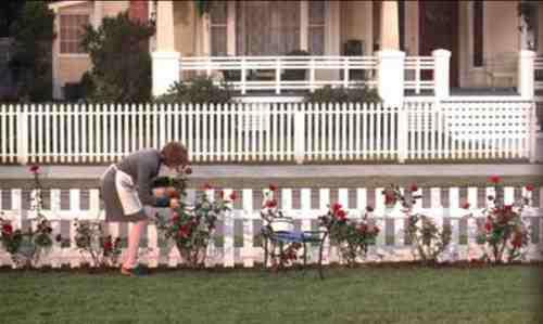 Annette Bening in American Beauty