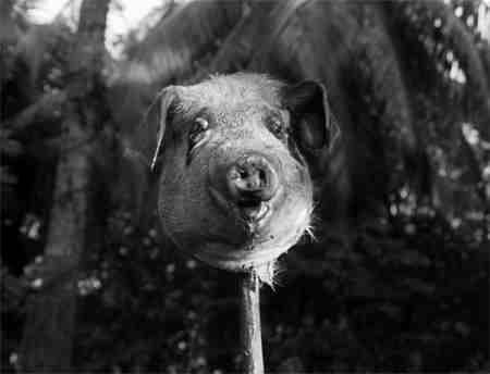 Lord Of The Flies (1963) Peter Brook - Pig's Head