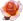 Emoticon_Rose_1.42K