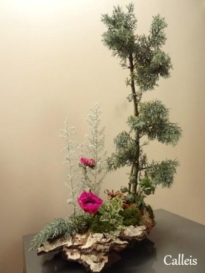 arrangement végétatif