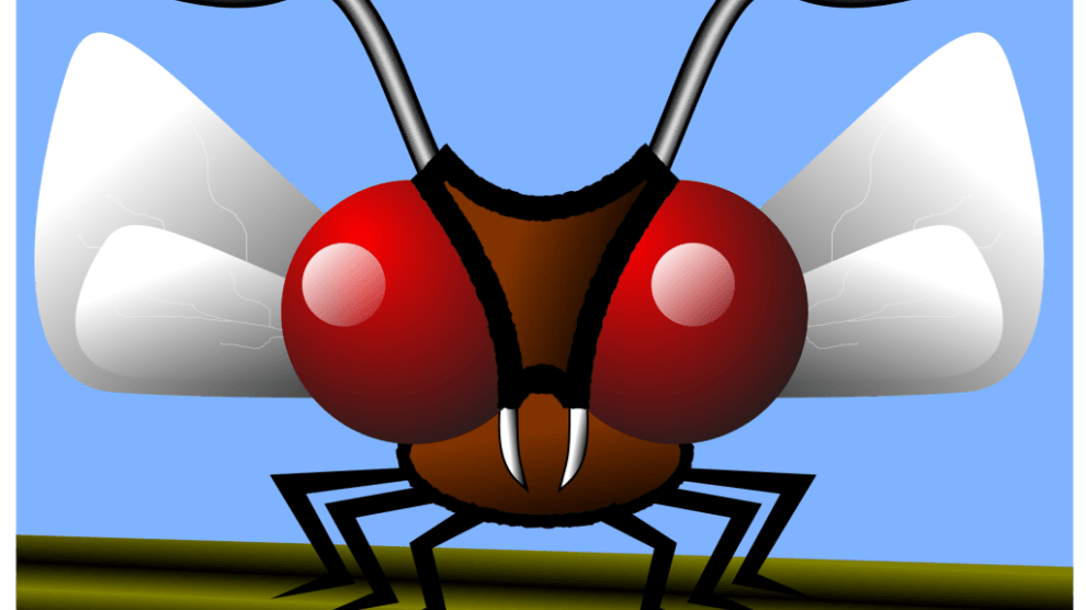 mosquito 162173 - June 26 - July 2 as National Mosquito Control Awareness Week