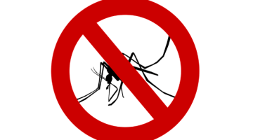 mosquito - Aerial spraying for mosquito control in Miami