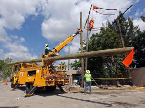 MIAMI hardening 300x223 - FPL strengthens the electric grid serving the city of Miami as part of 2018 reliability and storm preparedness efforts