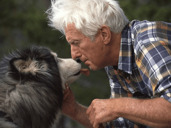 pooch - Usted y su perro quizá tengan unas bacterias parecidas en la panza