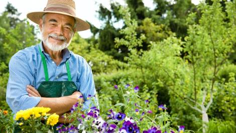 shutterstock 78532774 - Miami-Dade Parks encouraging healthy living, during National Older Americans Month
