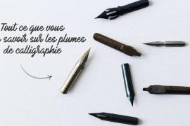 Plumes de calligraphie - calligraphique