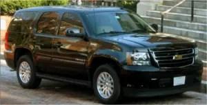 professional limousine services