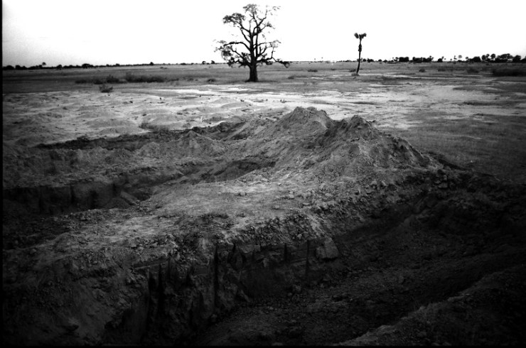 John Liebenberg: The grave site at Uupindi photographed a few weeks after the burial of Swapo guerrillas, with shallow graves in the background and an omwandi tree, from 'The Crucifixion', 1989
