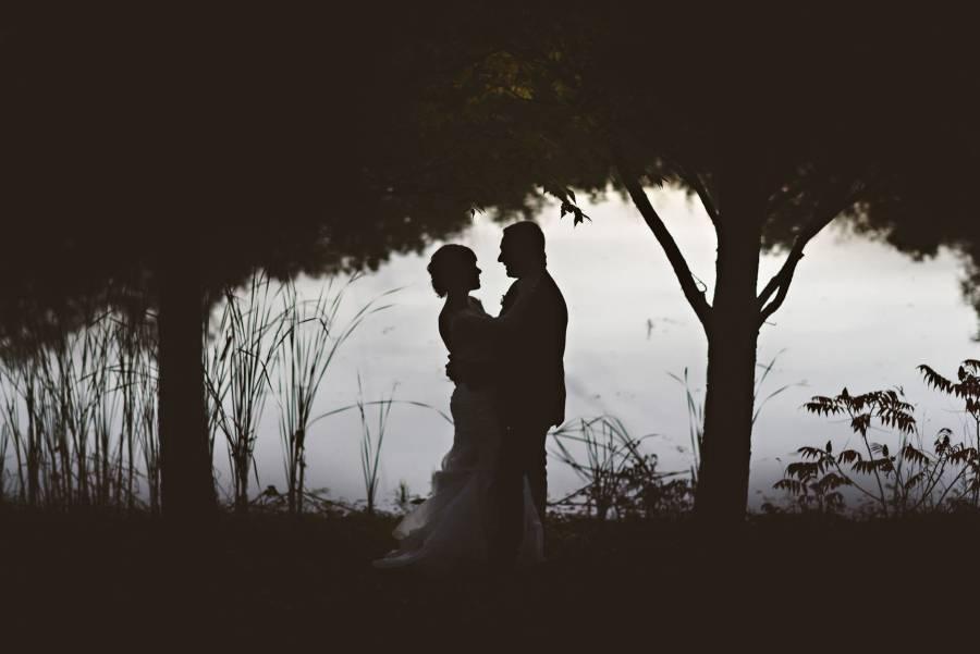 silhouette photograph niagara backyard wedding