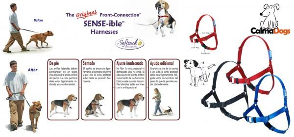 Sense-ible