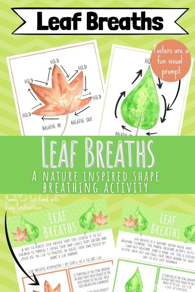 Leaf Breaths Nature shape breathing activity