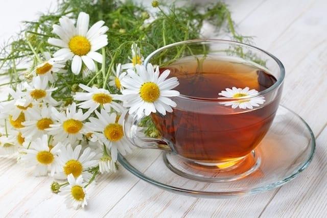 Chá de camomila Calmante Natural e seus benefícios