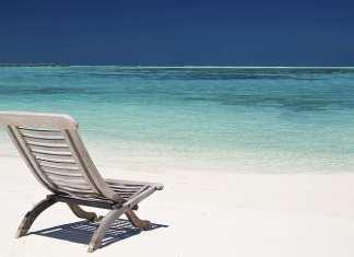 6 calmantes naturais contra o estresse