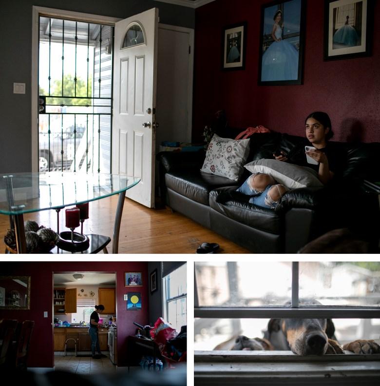 Claudeth pasa las tardes viendo documentales sobre crímenes reales y viendo TikToks. Los perros de la familia olfatean la ventana del dormitorio. Claudeth cocina y lava platos mientras su madre trabaja. Foto de Anne Wernikoff, CalMatters